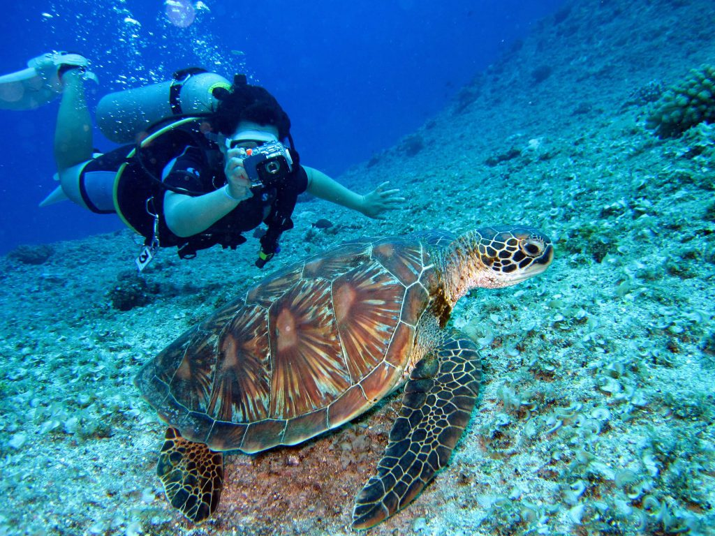 great barrier reef 3 Best Tour Place