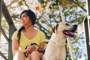 Best Pets For Travelers For Travelling Who Love Travel A Lot